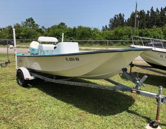17 Foot Boston Whaler Montauk